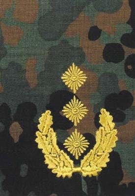 Zdjęcie: Pagony BW flecktarn - żółte obszycie - 25. Generalleutnant