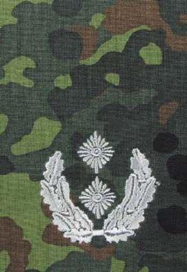 Zdjęcie: Pagon BW flecktarn - srebrne obszycie - 21. Oberstleutnant